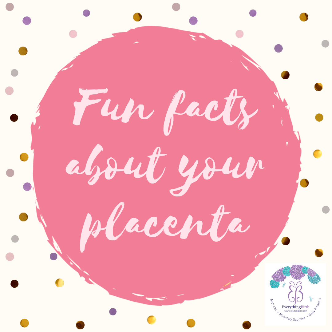 Fun facts about your amazing placenta!